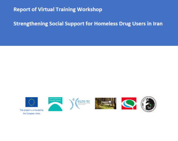 Report of Virtual Training Iranian Workshop