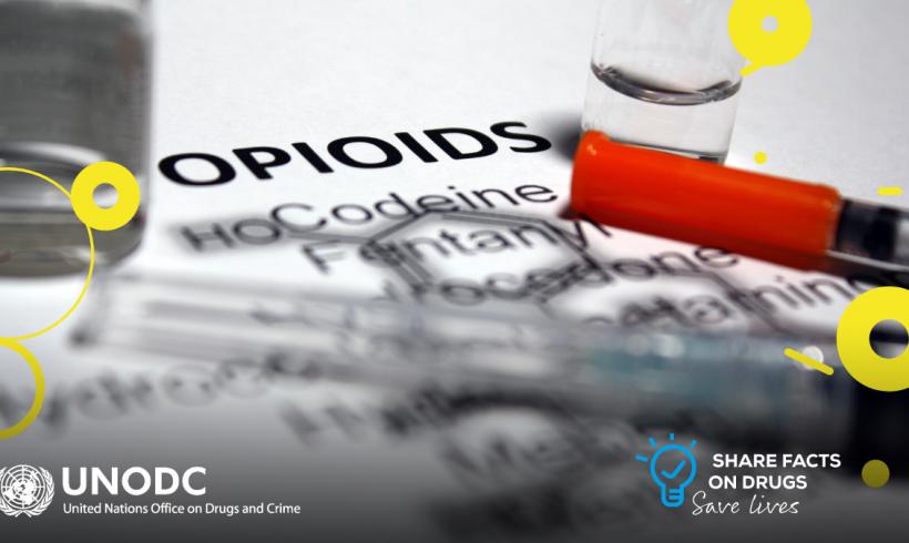 UNODC – World Drug Day announcement